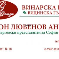 ВИДИНСКА-ГЪМЗА